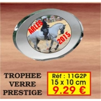 TROPHEE VERRE PRESTIGE : REF. 11G2P - 15 x 10 CM