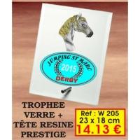 TROPHEE VERRE PRESTIGE : REF. W205 - 23 x 18 CM