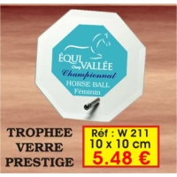 TROPHEE VERRE PRESTIGE : REF. W211 - 10 x 10 CM