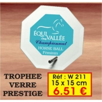 TROPHEE VERRE PRESTIGE : REF. W211 - 15 x 15 CM