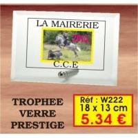 TROPHEE VERRE PRESTIGE : REF. W222 - 18 x 13 CM