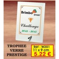 TROPHEE VERRE PRESTIGE : REF. W201 - 11 x 9 CM