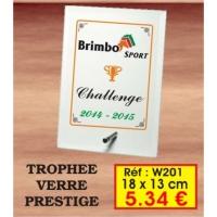 TROPHEE VERRE PRESTIGE : REF. W201 - 18 x 13 CM