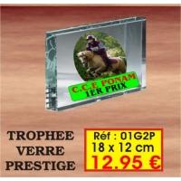 TROPHEE VERRE PRESTIGE : REF. 01G2P - 18 x 12 CM