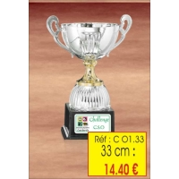 COUPE : REF. CO1 - 33 CM