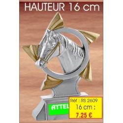 Trophée resine 16 cm - RS2609.16