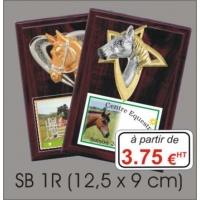 Plaques bois + résine relief : Réf. SB 1R