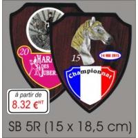 Plaques bois + résine relief : Réf. SB 5R